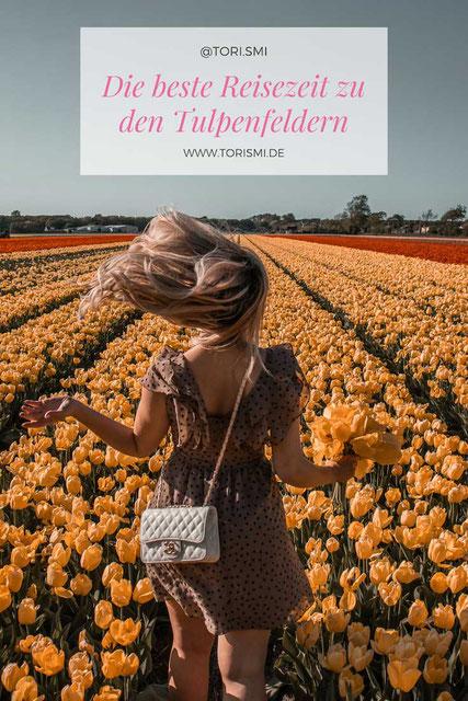 In dem Blogartikel geht es rund um die Tulpenfelder bei Lisse.