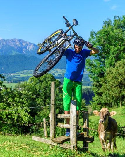 Teil des Projektes ist auch der Ersatz vorhandener Infrastruktur um die Durchgängigkeit für Mountainbiker zu gewährleisten, Gatter