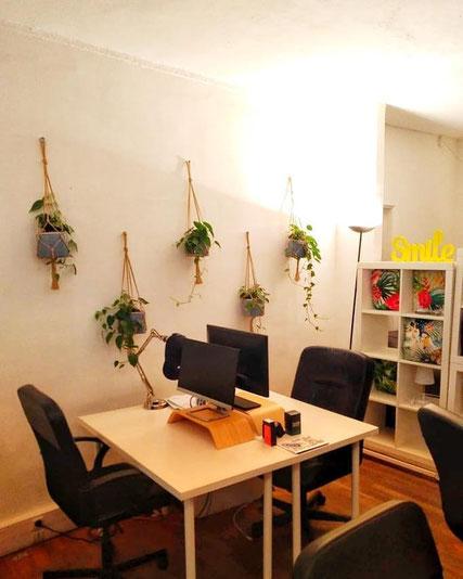 Décoration végétale de bureaux à Paris