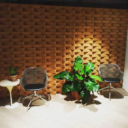 location et entretien de plantes pour entreprises à paris