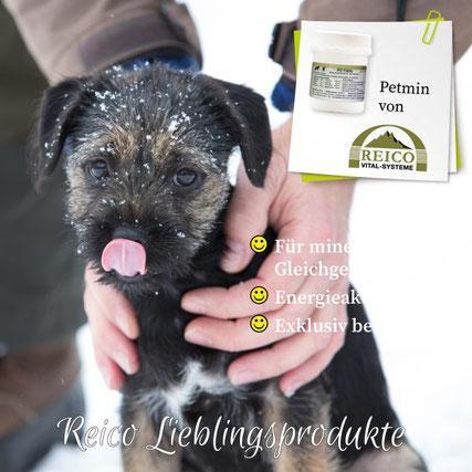 PETMIN ist die ideale Nahrungsergänzung zur Energieaktivierung.