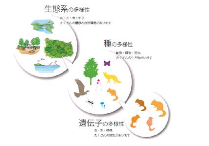 札幌市「生物多様性の保全」ホームページからのイラスト