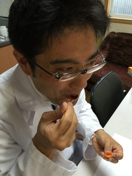 スプーンを使って、ヤマボウシの中の熟した部分を食べるガーデンドクター柴ちゃん。