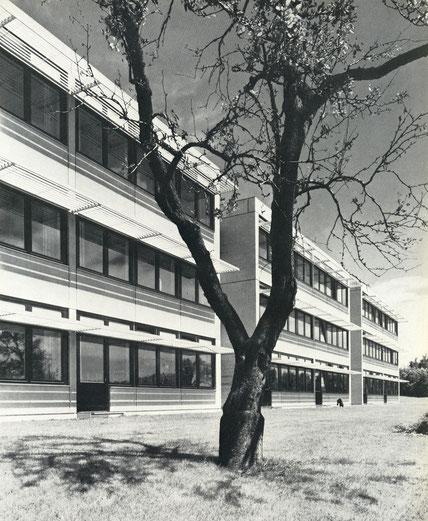 Die Kerschensteinerschule