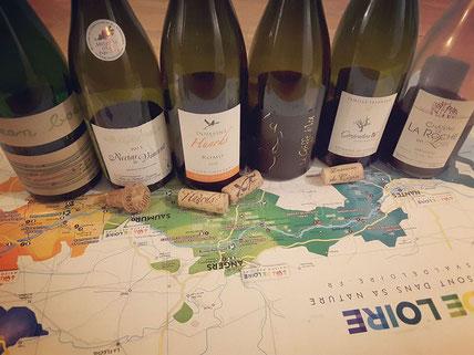 online-wine-tastings-Loire-Valley-masterclass-French-wine-expert-Myriam-Fouasse-Robert