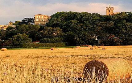 Mairie de Viviers-les-Montagnes en Montagne Noire, Terres d'Autan, Le Pays de Cocagne, randonnée Dourgne et Puylaurens, Office de tourisme