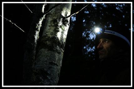 LEDLENSER-Stirnlampe-Abenteurer-Juergen-Sedlmayr