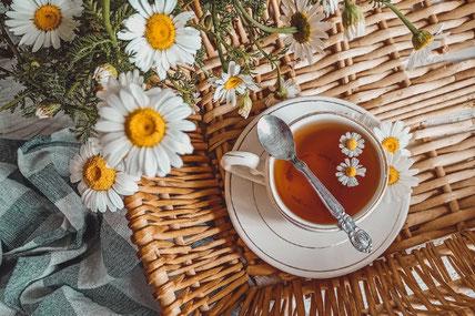 グランドピアノとチェロのペーパークラフト。