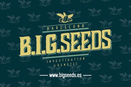 comprar semillas marihuana des de Chile Argentina Colombia Uruguay en Cactus martorell growshop