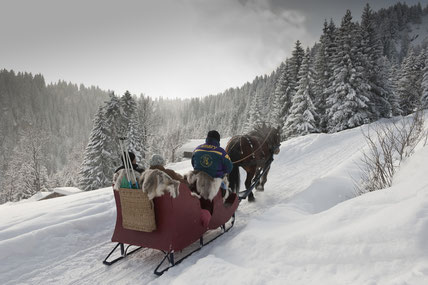 Sleigh-rides-to-Colombaz-contamines