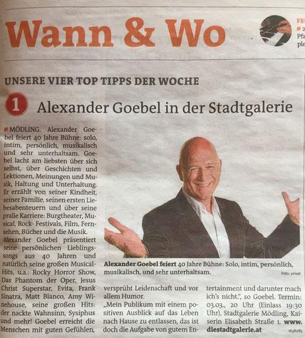 """Alexander Goebel """"...wieder solo!"""" Stadtgalerie Mödling"""