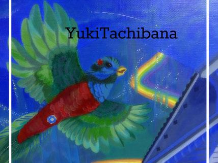 立花雪 YUkiTachibana
