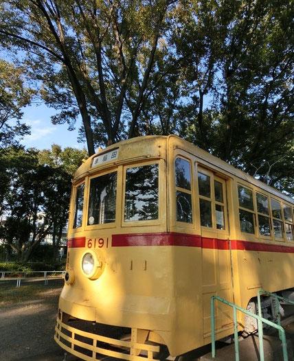 10月17日(2014) 緑の中の都電:早稲田行の都電荒川線旧車両の展示(府中市郷土の森公園)。子どもが交通規則を学べる交通公園になっています