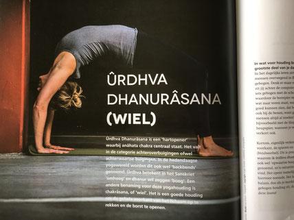 media  yogalos  yoga  pilates in winschoten