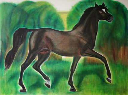 Latimer by St. Cloud - Trakehnen stallion, oil on canvas, 90 x 120 cm, 2016