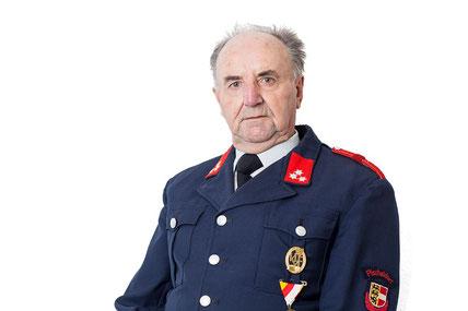 Mathias Pistotnig, Feuerwehrmann
