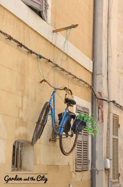 La bicyclette bleue avec une poche de lierre (herdera)