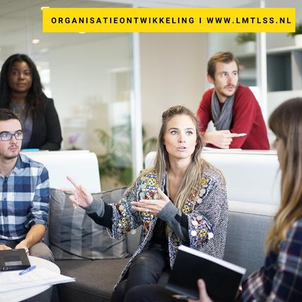 LMTLSS - organisatieontwikkeling I helpt de onderstroom in organisaties zichtbaar maken