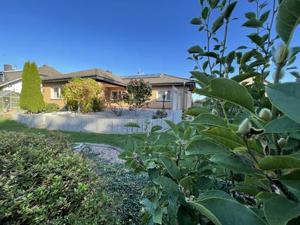 EFH in 31535 Neustadt