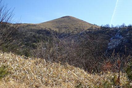 飯盛山を見上げる