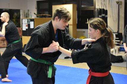 Kampfkunst Lauf, Bujinkan Budo Taijutsu, Wakagi Lauf