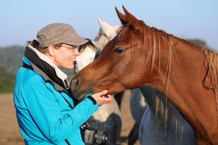 Pferdefotografie Syke Start Wiebke Heye