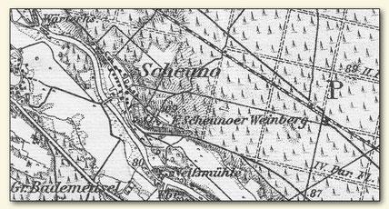 Auszug aus Messtischblatt mit Scheunoer Weinberg bei Bademeusel (Lausitzer Weinfreunde)