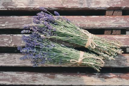 Lavendel kann als Tee beruhigend wirken oder ätherisches Öl oder Dene Haut beruhigen.