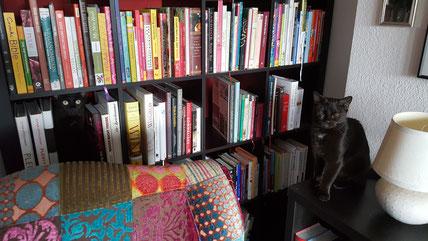 Mellie war eine ziemlich nerdige Katze, wie man an ihrer Vorliebe zu Büchern sehen kann. Melody (rechts) hatte da nur wenig Verständnis.