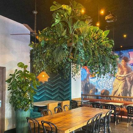 Entretien de plantes pour les bureaux de votre entreprise à Paris