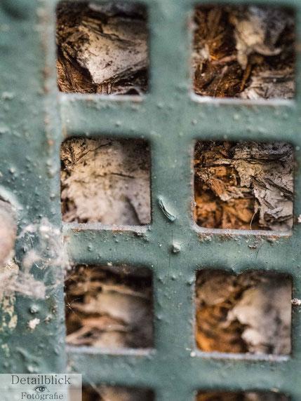 Holz hinter Gitter