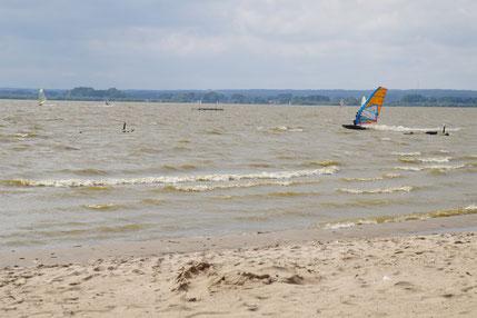 Bei bewölktem Himmel und Wellengang flitzen Surfer über den Dümmer-See