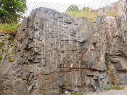こんな岩の壁にも鳥の彫刻が