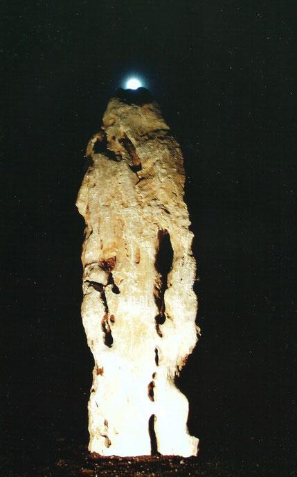 2007. MONUMENT DEDIE AUX ARBRES ABATTUS. YANNICK Y BEN JAKOBER.
