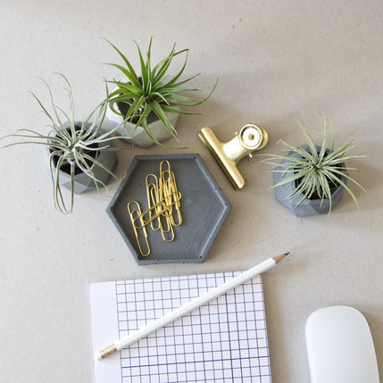 Geometric Air Plant Holder Trio by PASiNGA home decor accents