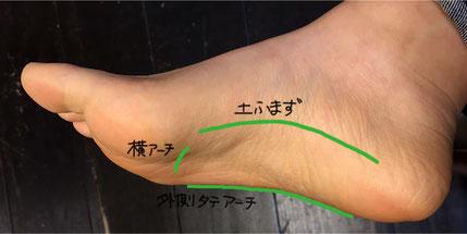 大まかな足裏アーチ3種の位置