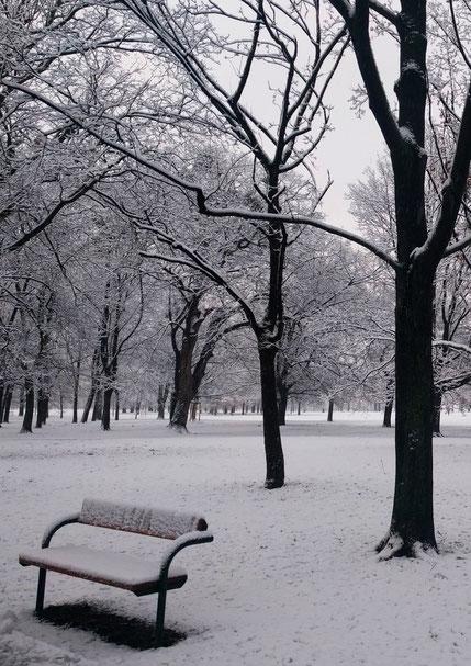 Winterlicher Prater