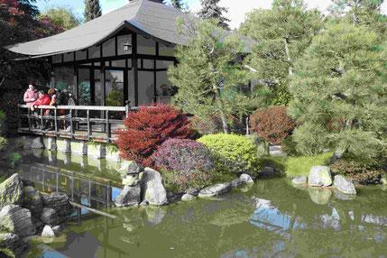 Der Bonsai-Garten in Ferch am Schwielowsee   Foto: Weil