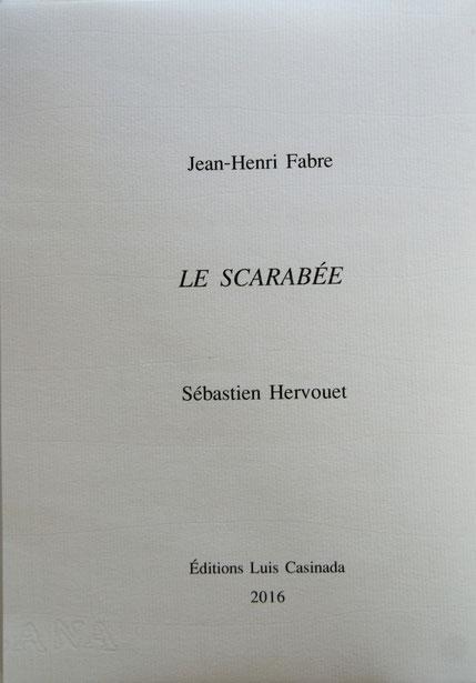 Le 7 mars 2016, Sébastien Hervouet s'est dit :  tiens, un petit scarabée...