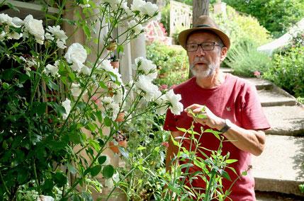 L'Atelier du Mille Pattes : le jardin