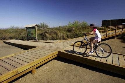 Cycling Elbro Delta