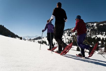 Snowshoes outing Saint François Longchamp