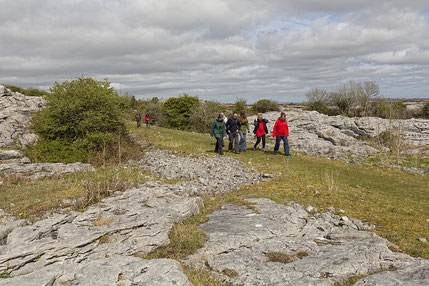 alking in the Burren