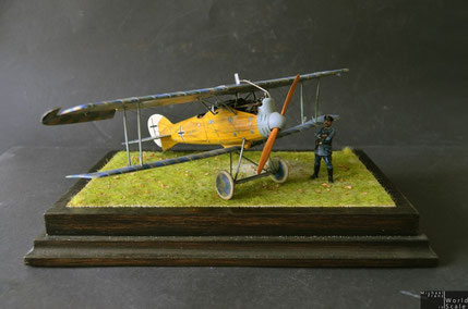 Roland D.VIa - 1/32 by Wingnut Wings