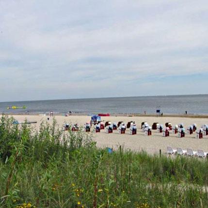 Der weitläufige Strand von Swinemünde bietet den Besuchern viel Platz zum Sonnen. Zahlreiche Strandkörbe sind aufgestellt.