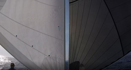 Butterfly Segeln. Katamaran Mitsegeln, Katamaran Mitsegeln Mittelmeer, Katamaran Mitsegeln Atlantik, Katamaran Hochseesegeln, Aktiv Mitsegeln, Katamaran Mitsegeln Segeltörn,  Katamaran Atlantiküberquerung