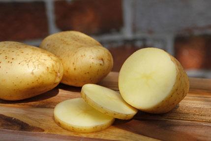 Afra mehligkochende Kartoffel