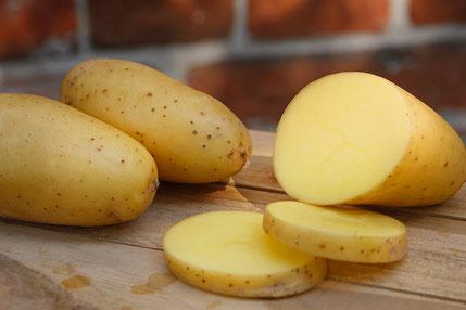 Glorietta festkochende Kartoffel
