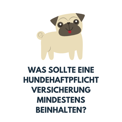 Was sollte eine Hundehaftpflichtversicherung mindestens beinhalten?
