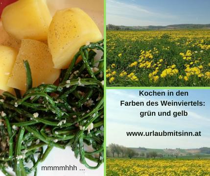 Kochen nach Farben der Natur: derzeit viel grün und gelb ...